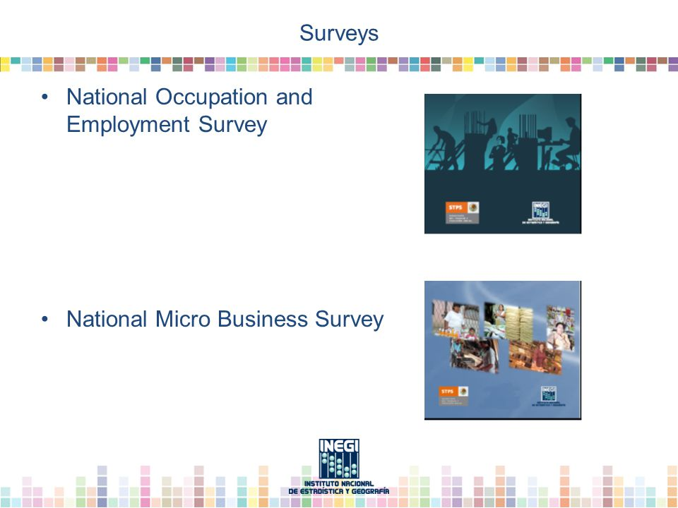 Surveys National Occupation and Employment Survey National Micro Business Survey
