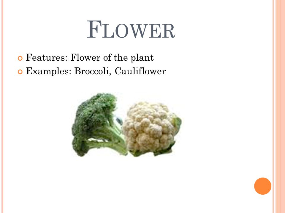 F LOWER Features: Flower of the plant Examples: Broccoli, Cauliflower