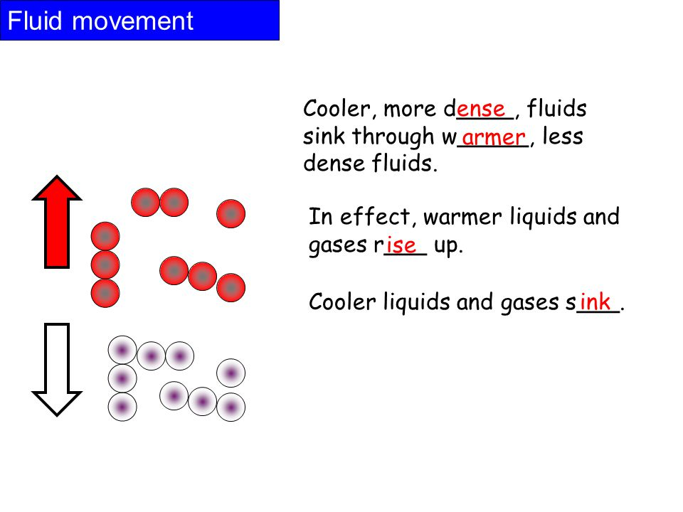Fluid movement Cooler, more d____, fluids sink through w_____, less dense fluids.