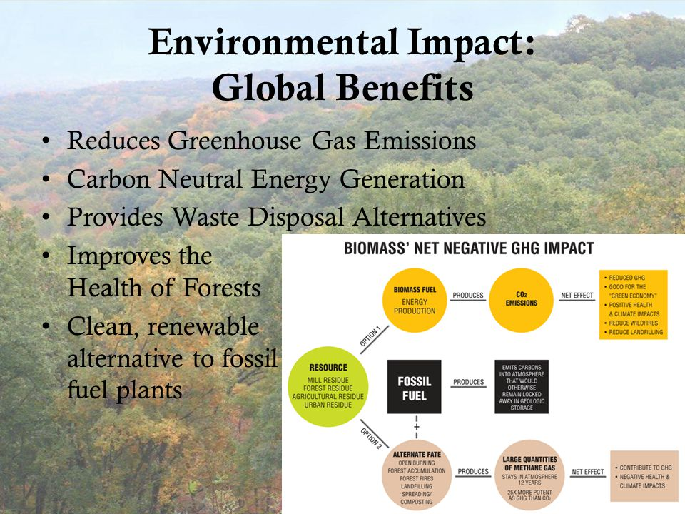 Environmental Impact: Global Benefits Reduces Greenhouse Gas Emissions Carbon Neutral Energy Generation Provides Waste Disposal Alternatives Improves the Health of Forests Clean, renewable alternative to fossil fuel plants