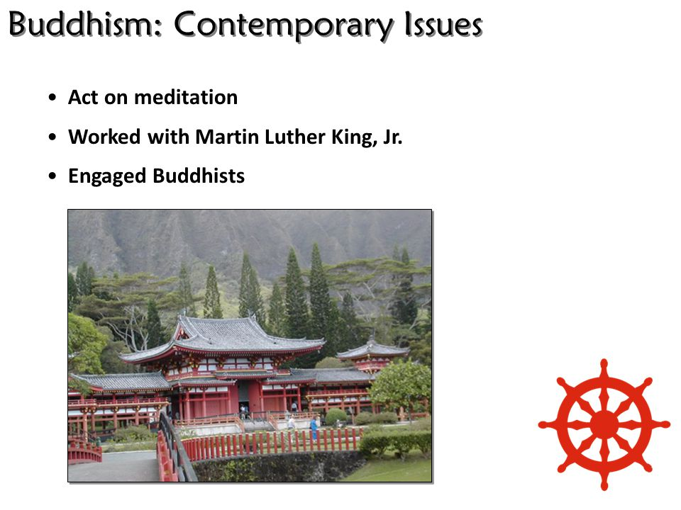 Buddhism: Contemporary Issues Act on meditation Worked with Martin Luther King, Jr.