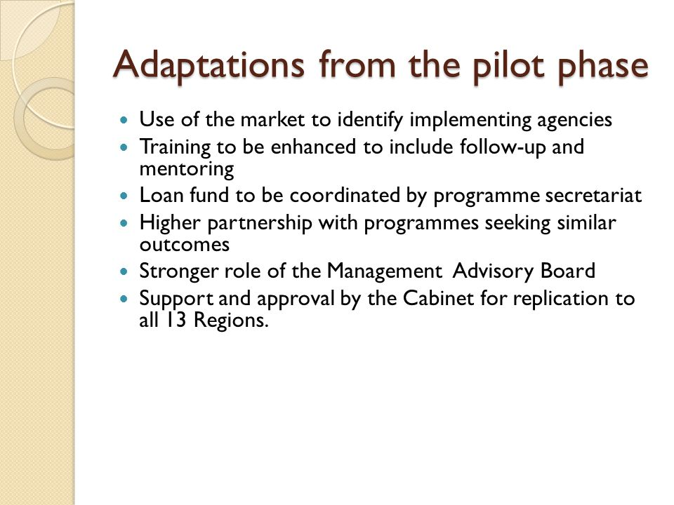 Adaptations from the pilot phase Use of the market to identify implementing agencies Training to be enhanced to include follow-up and mentoring Loan fund to be coordinated by programme secretariat Higher partnership with programmes seeking similar outcomes Stronger role of the Management Advisory Board Support and approval by the Cabinet for replication to all 13 Regions.