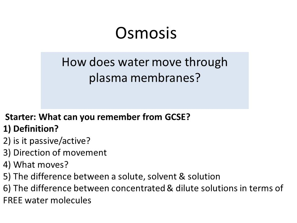 Osmosis And Diffusion Facilitated Diffusion And Active Transport
