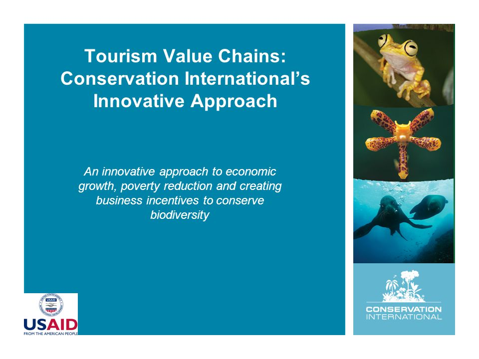 Tourism Value Chains: Conservation International's Innovative Approach An innovative approach to economic growth, poverty reduction and creating business incentives to conserve biodiversity