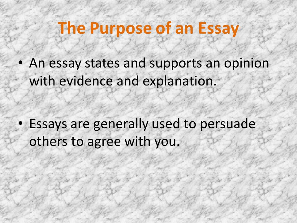 the paragraph essay help on how to write one the purpose of an  the purpose of an essay an essay states and supports an opinion evidence and explanation