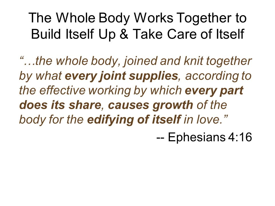 The Whole Body Works Together to Build Itself Up & Take Care of Itself …the whole body, joined and knit together by what every joint supplies, according to the effective working by which every part does its share, causes growth of the body for the edifying of itself in love. -- Ephesians 4:16