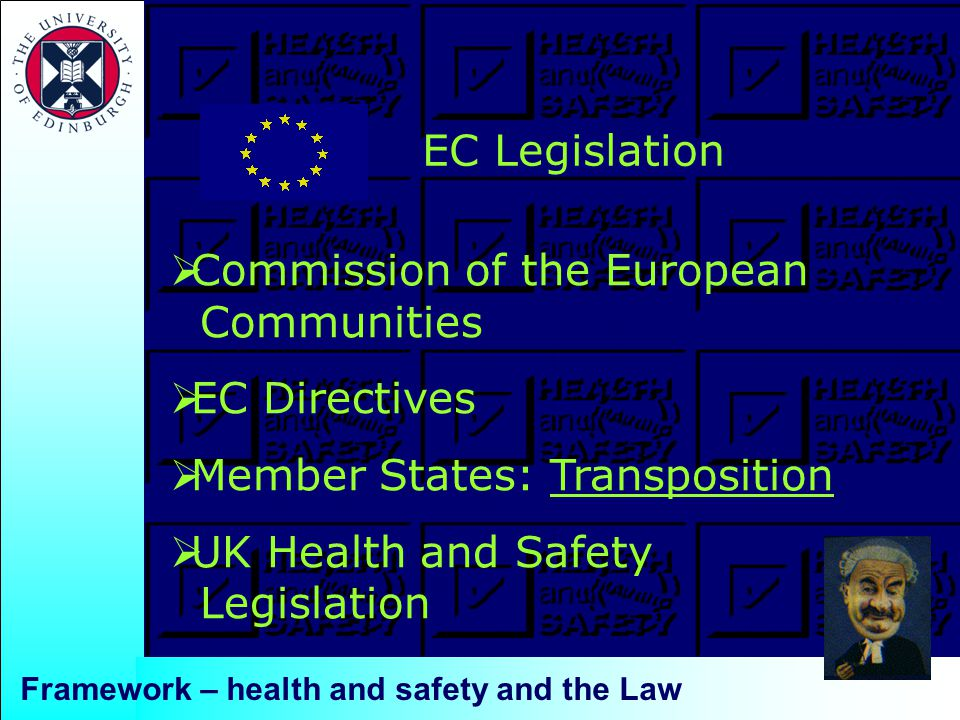  Commission of the European Communities  EC Directives  Member States: Transposition  UK Health and Safety Legislation EC Legislation Framework – health and safety and the Law
