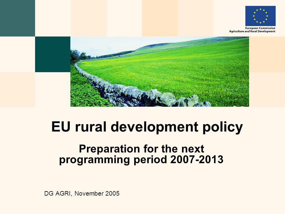 Preparation for the next programming period DG AGRI, November 2005 EU rural development policy