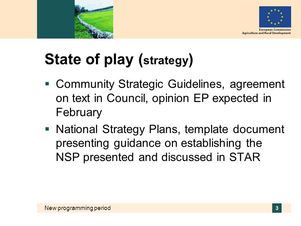 New programming period 3 State of play ( strategy )  Community Strategic Guidelines, agreement on text in Council, opinion EP expected in February  National Strategy Plans, template document presenting guidance on establishing the NSP presented and discussed in STAR