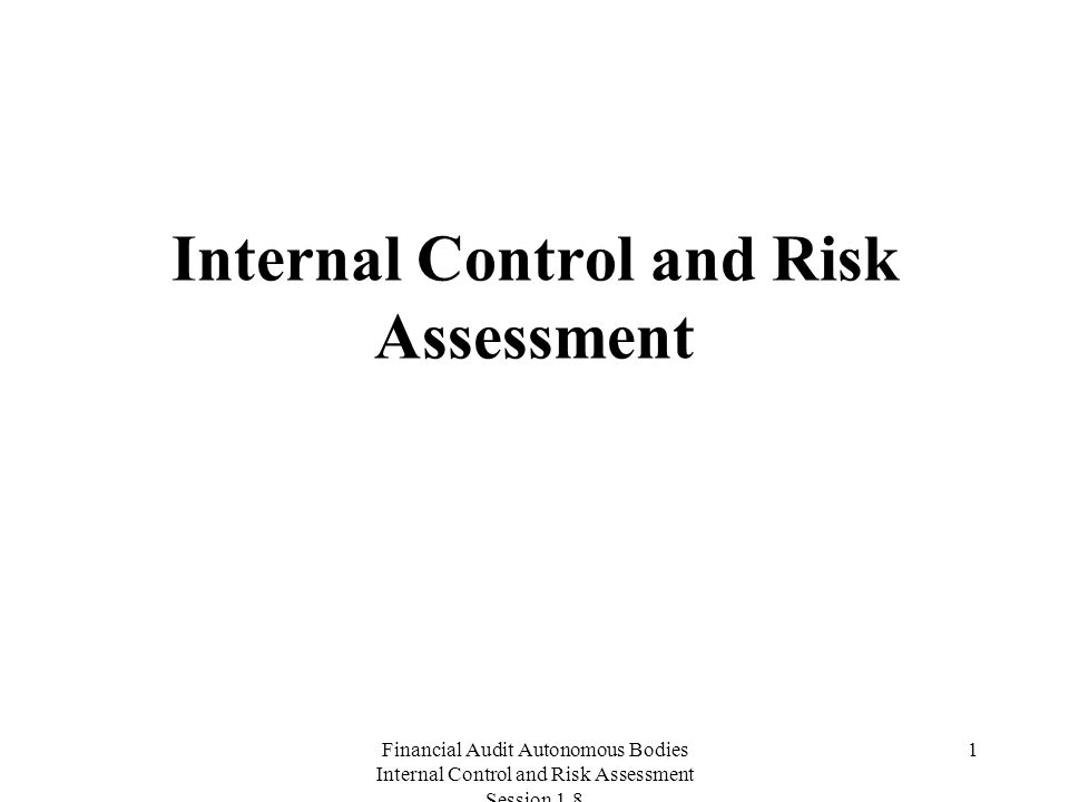 Financial Audit Autonomous Bodies Internal Control and Risk Assessment Session Internal Control and Risk Assessment