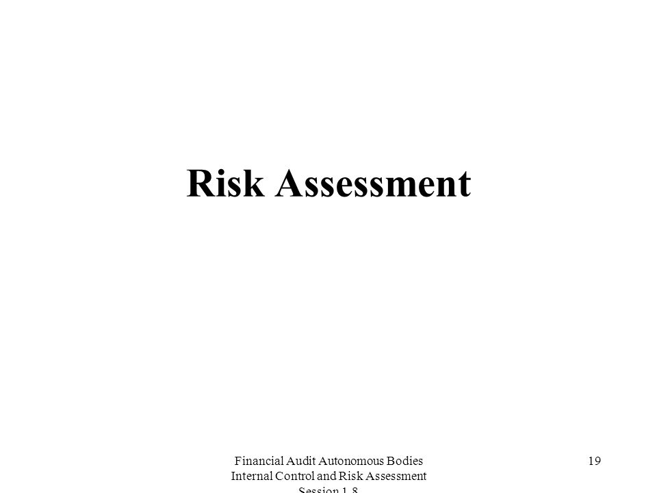 Financial Audit Autonomous Bodies Internal Control and Risk Assessment Session Risk Assessment