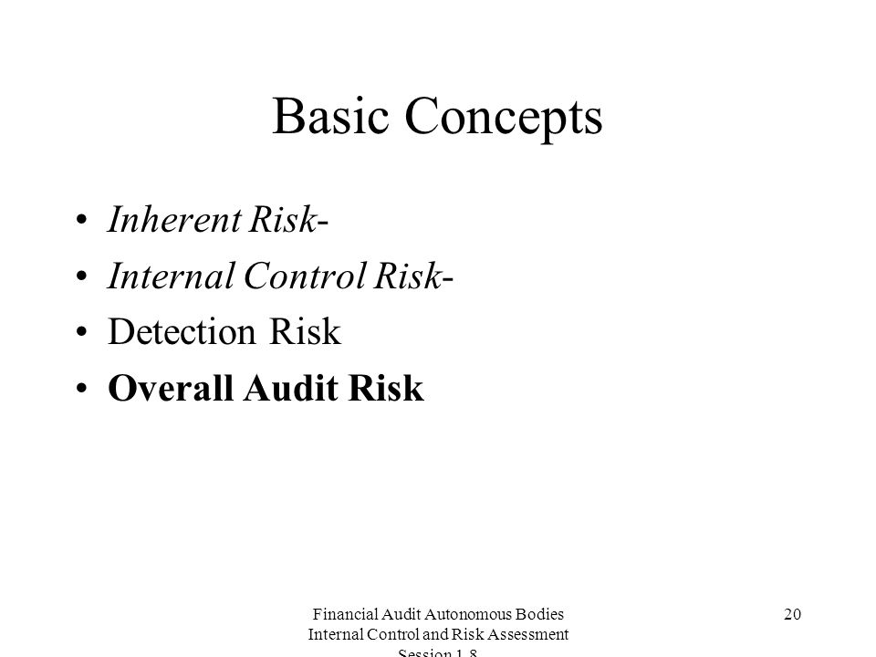 Financial Audit Autonomous Bodies Internal Control and Risk Assessment Session Basic Concepts Inherent Risk- Internal Control Risk- Detection Risk Overall Audit Risk