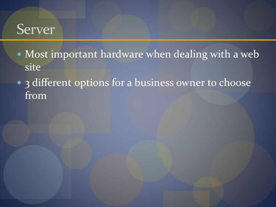 Server Most important hardware when dealing with a web site 3 different options for a business owner to choose from