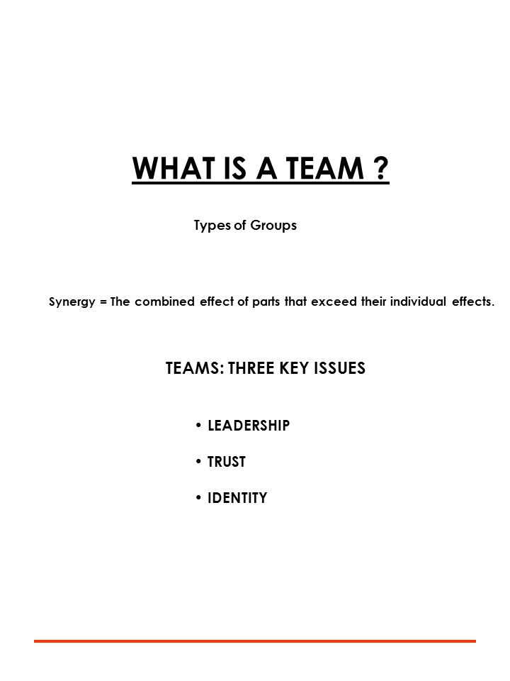 WHAT IS A TEAM .