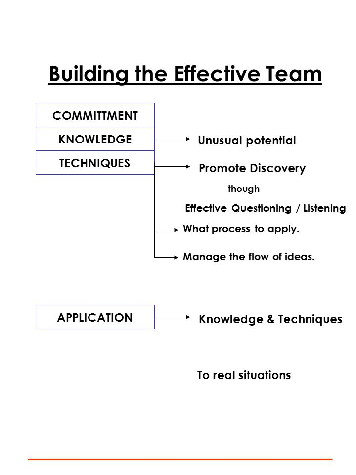 Building the Effective Team COMMITTMENT KNOWLEDGE Unusual potential TECHNIQUES Promote Discovery though Effective Questioning / Listening What process to apply.