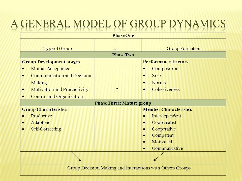 Phase One Type of GroupGroup Formation Phase Two Group Development stages  Mutual Acceptance  Communication and Decision Making  Motivation and Productivity  Control and Organization Performance Factors  Composition  Size  Norms  Cohesiveness Phase Three: Mature group Group Characteristics  Productive  Adaptive  Self-Correcting Member Characteristics  Interdependent  Coordinated  Cooperative  Competent  Motivated  Communicative Group Decision Making and Interactions with Others Groups