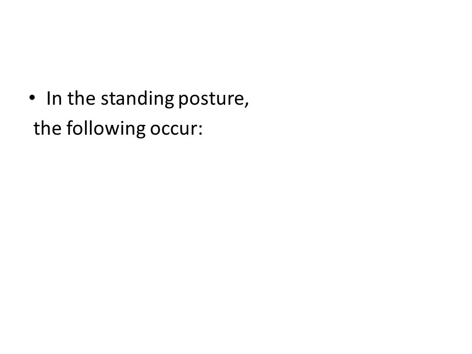 In the standing posture, the following occur: