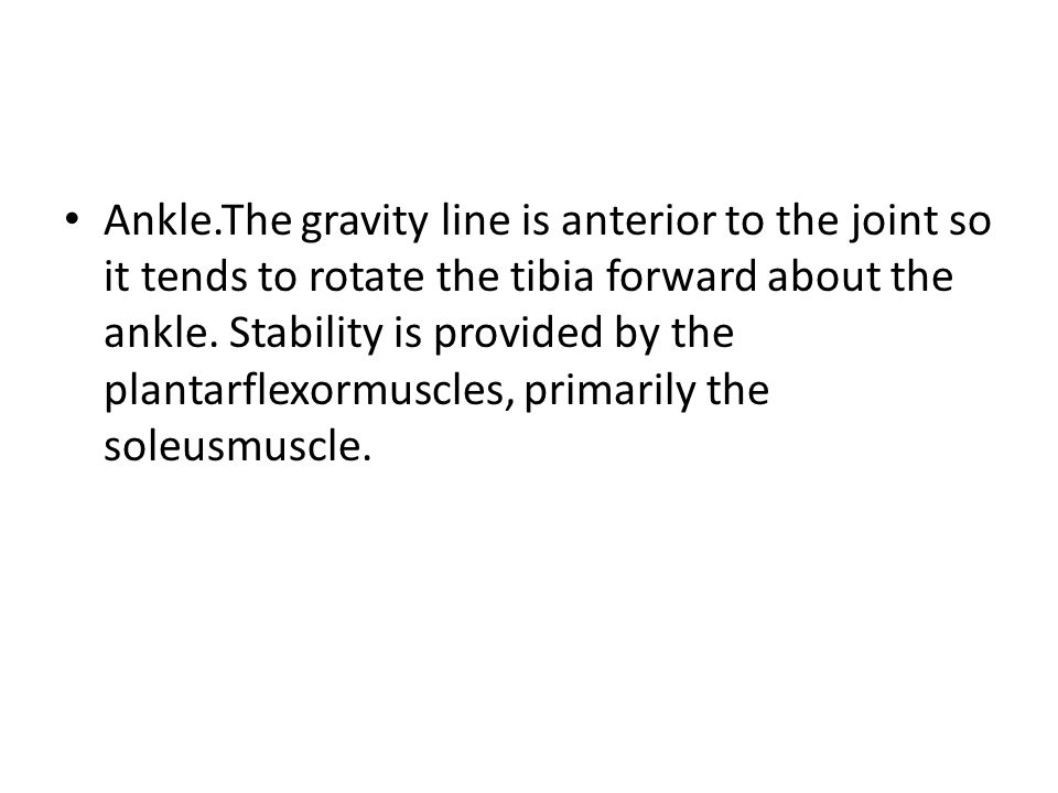 Ankle.The gravity line is anterior to the joint so it tends to rotate the tibia forward about the ankle.