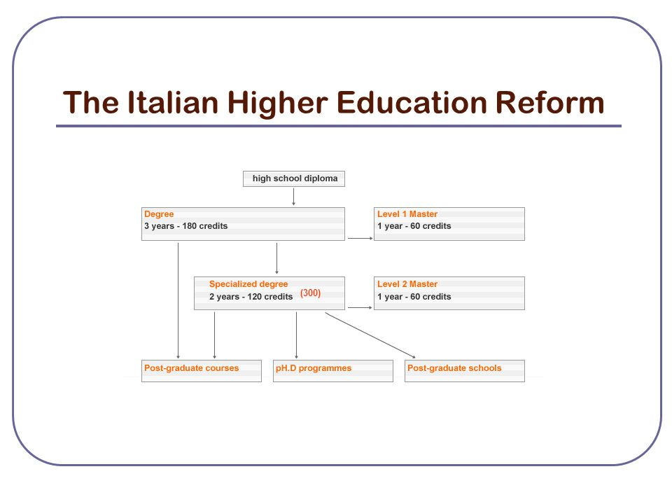 The Italian Higher Education Reform (300)