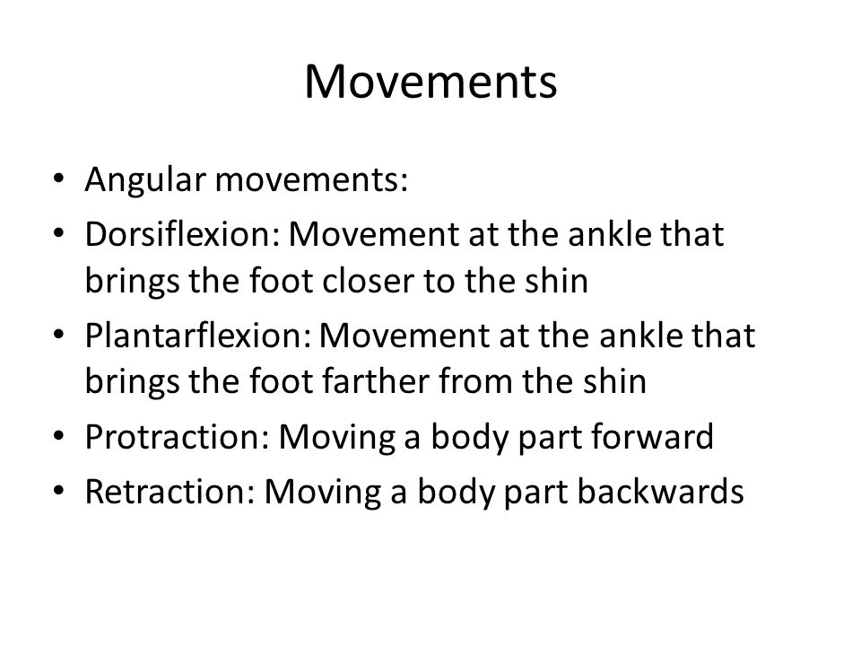 Movements Angular movements: Dorsiflexion: Movement at the ankle that brings the foot closer to the shin Plantarflexion: Movement at the ankle that brings the foot farther from the shin Protraction: Moving a body part forward Retraction: Moving a body part backwards