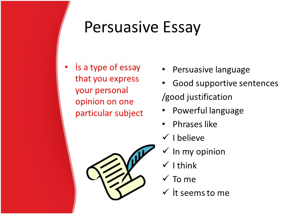the writing process persuasive essay