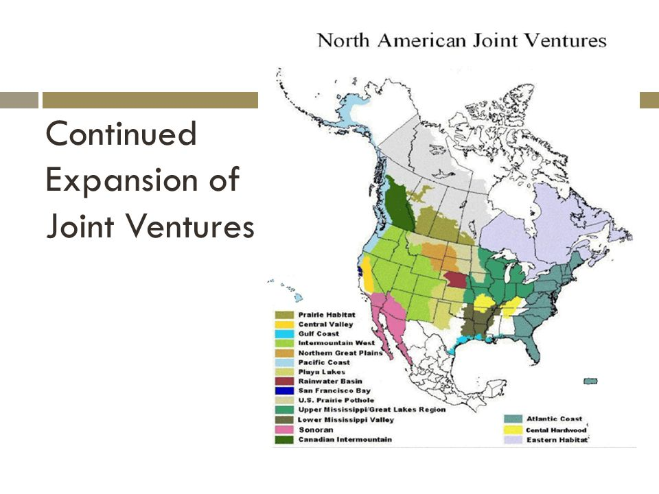 Continued Expansion of Joint Ventures