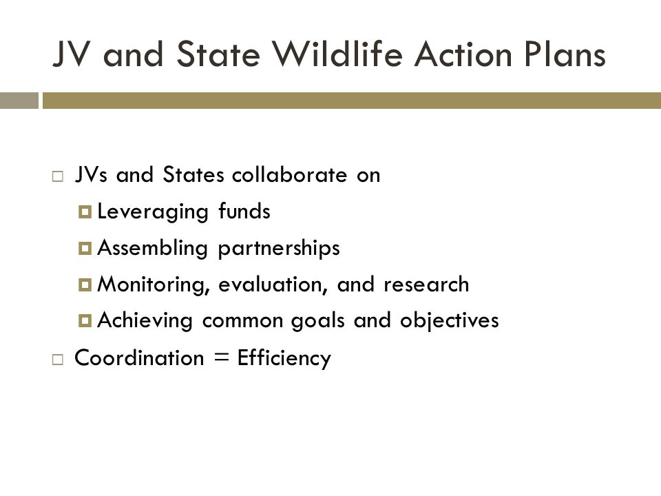JV and State Wildlife Action Plans  JVs and States collaborate on  Leveraging funds  Assembling partnerships  Monitoring, evaluation, and research  Achieving common goals and objectives  Coordination = Efficiency