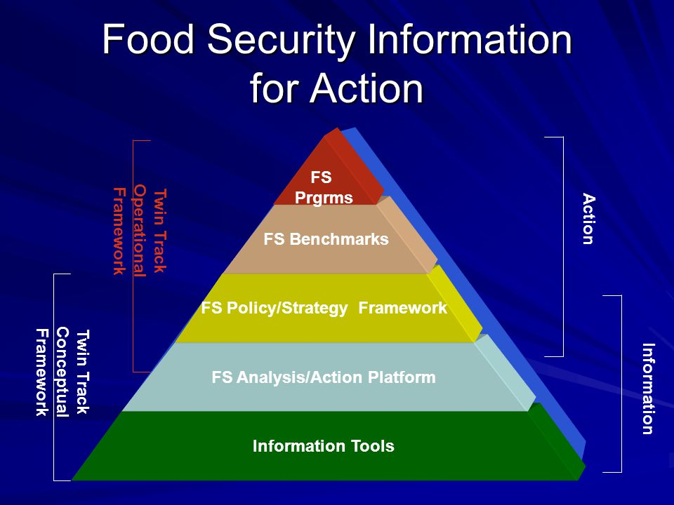 Food Security Information for Action Information Tools FS Analysis/Action Platform FS Policy/Strategy Framework FS Benchmarks FS Prgrms Twin Track Conceptual Framework Twin Track Operational Framework Information Action