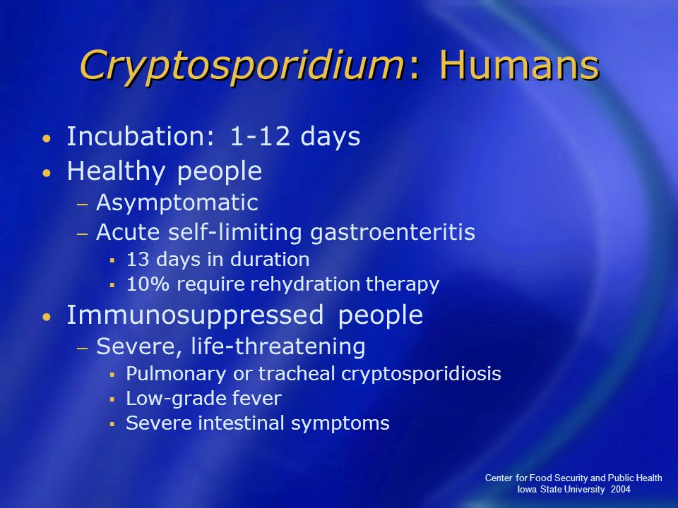 Center for Food Security and Public Health Iowa State University 2004 Cryptosporidium: Humans Incubation: 1-12 days Healthy people − Asymptomatic − Acute self-limiting gastroenteritis  13 days in duration  10% require rehydration therapy Immunosuppressed people − Severe, life-threatening  Pulmonary or tracheal cryptosporidiosis  Low-grade fever  Severe intestinal symptoms
