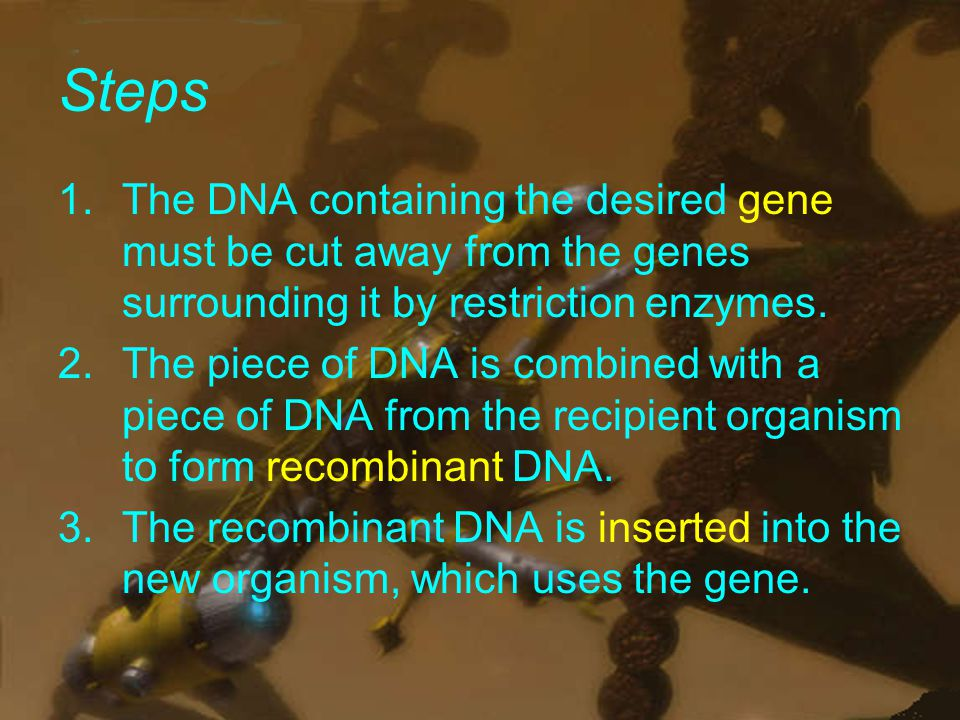 Steps 1.The DNA containing the desired gene must be cut away from the genes surrounding it by restriction enzymes.