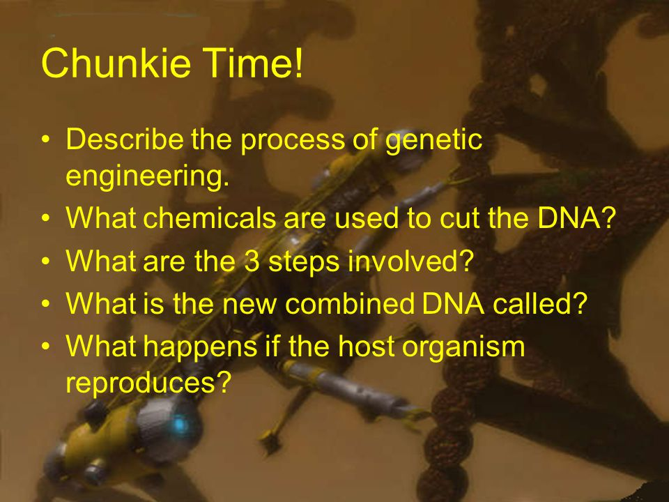 Chunkie Time. Describe the process of genetic engineering.
