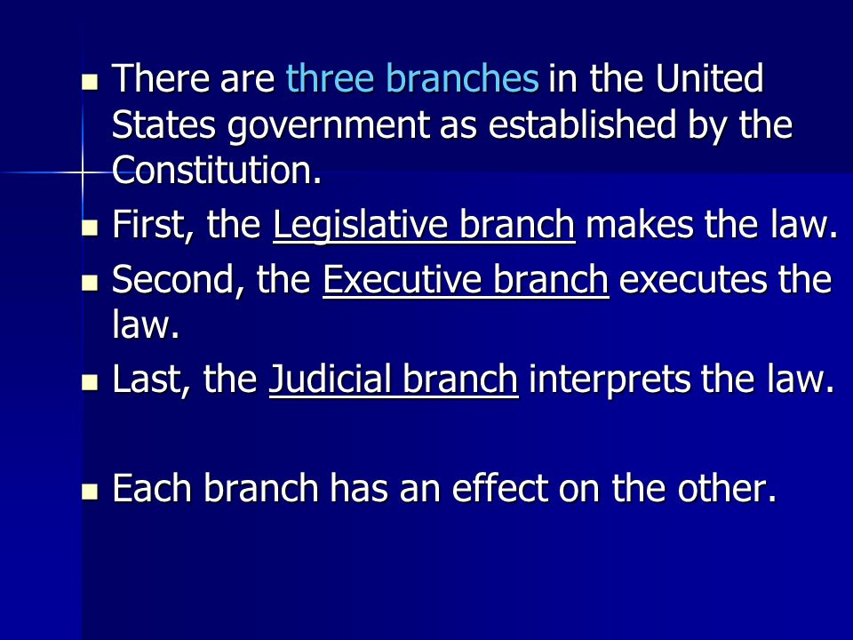 There are three branches in the United States government as established by the Constitution.