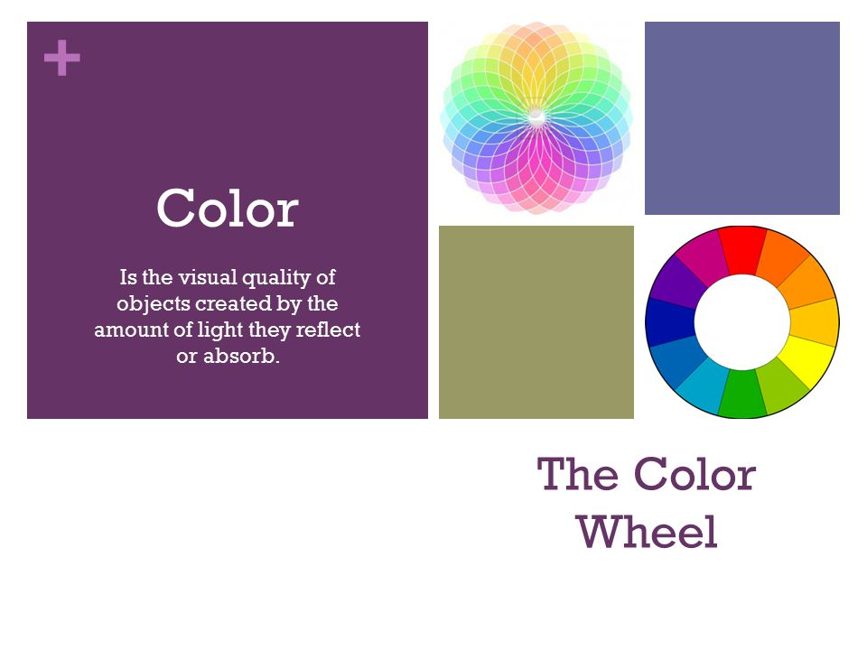 2 The Color Wheel Is Visual Quality Of Objects Created By Amount Light They Reflect Or Absorb