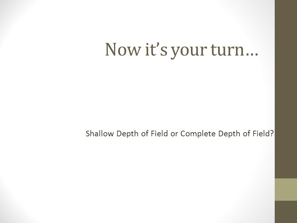 Now it's your turn… Shallow Depth of Field or Complete Depth of Field