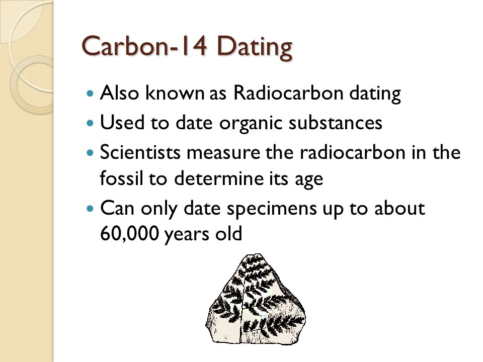 How Does Carbon Dating Provide The Age Of A Fossil