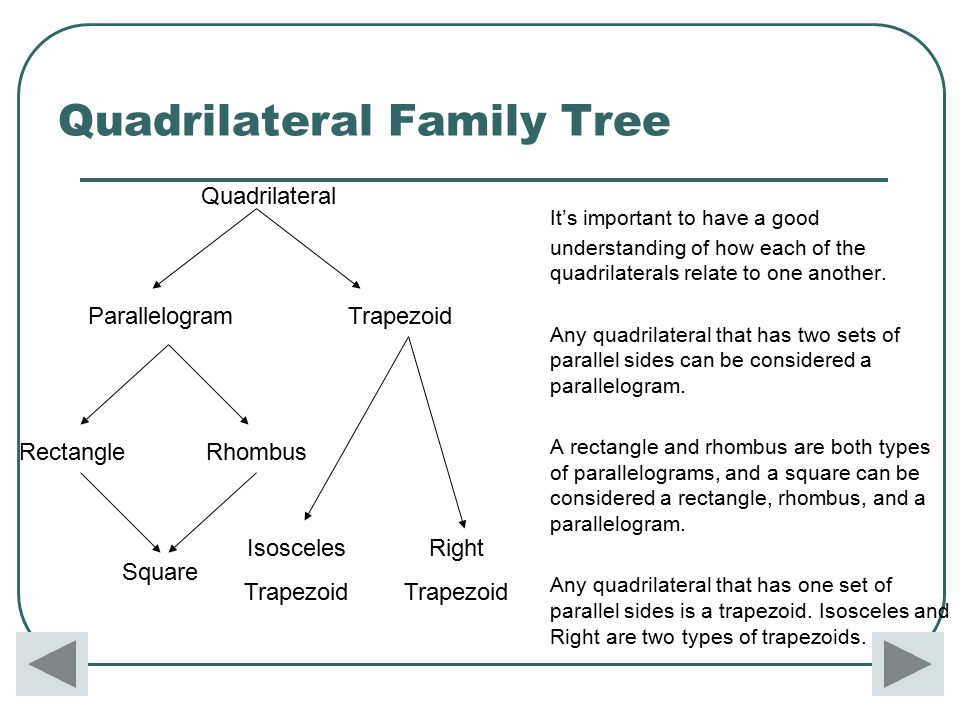 Trapezium quadrilateral family tree diagram example electrical 10 6 g7 lessons tes teach rh tes com quadrilateral family tree project blank family tree template editable ccuart Choice Image