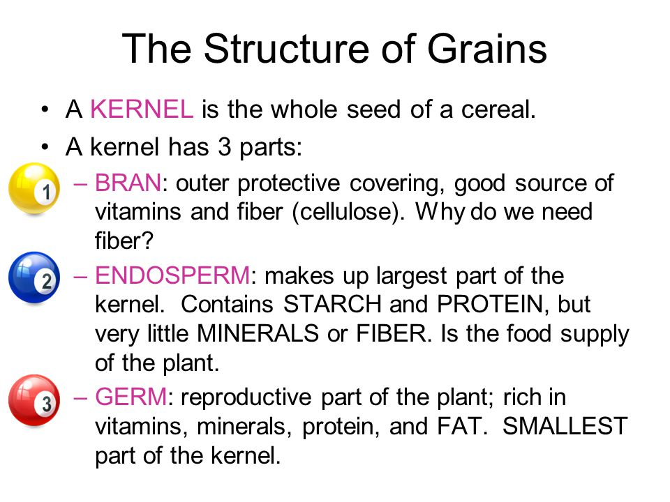 The Structure of Grains A KERNEL is the whole seed of a cereal.