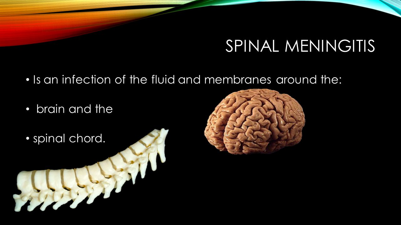 SPINAL MENINGITIS Is an infection of the fluid and membranes around the: brain and the spinal chord.