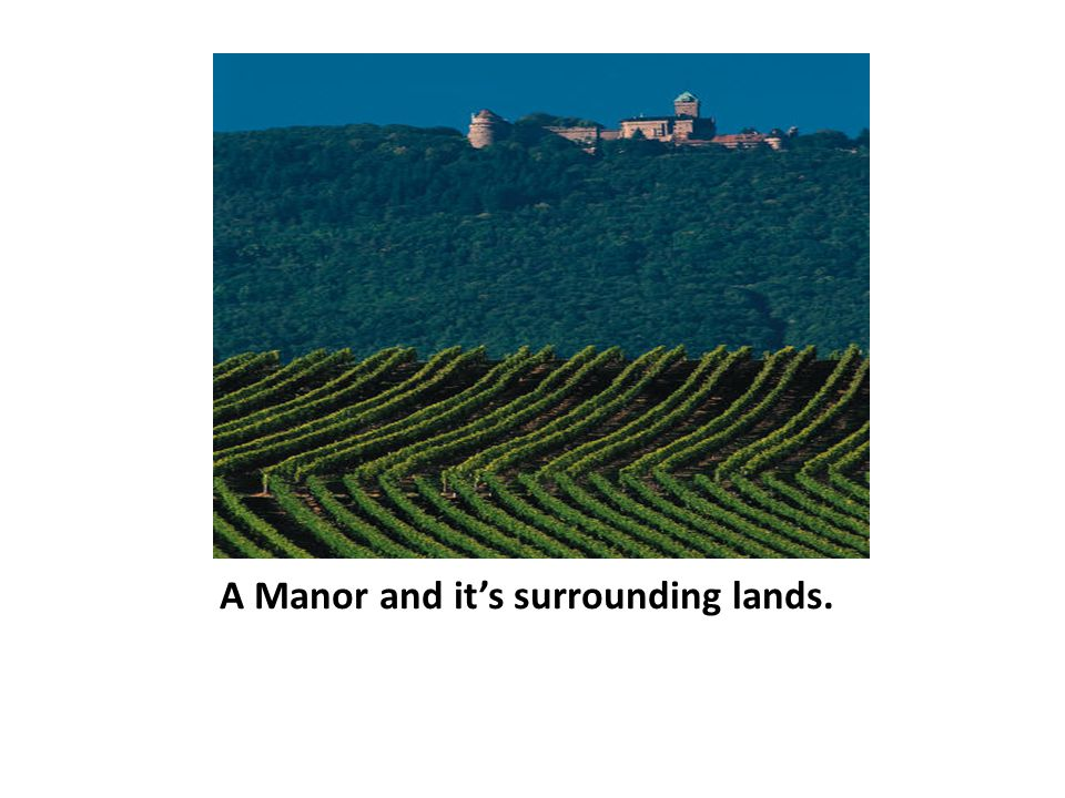 A Manor and it's surrounding lands.