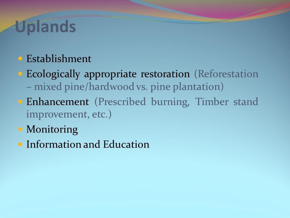 Uplands Establishment Ecologically appropriate restoration (Reforestation – mixed pine/hardwood vs.