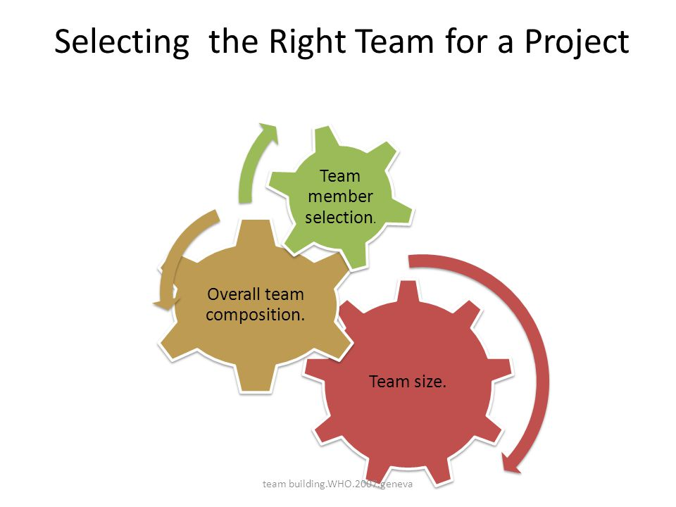 Selecting the Right Team for a Project Team size. Overall team composition. Team member selection. team building.WHO.2007.geneva