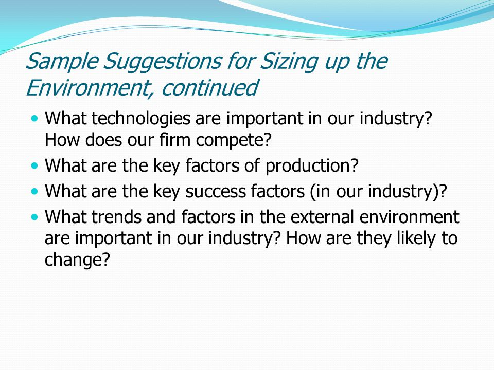 Sample Suggestions for Sizing up the Environment, continued What technologies are important in our industry? How does our firm compete? What are the k