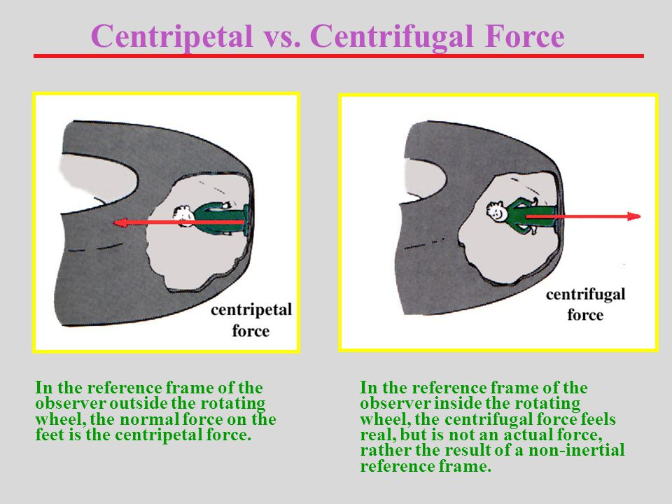 In the reference frame of the observer outside the rotating wheel, the normal force on the feet is the centripetal force.