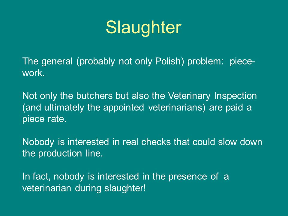Slaughter The general (probably not only Polish) problem: piece- work.