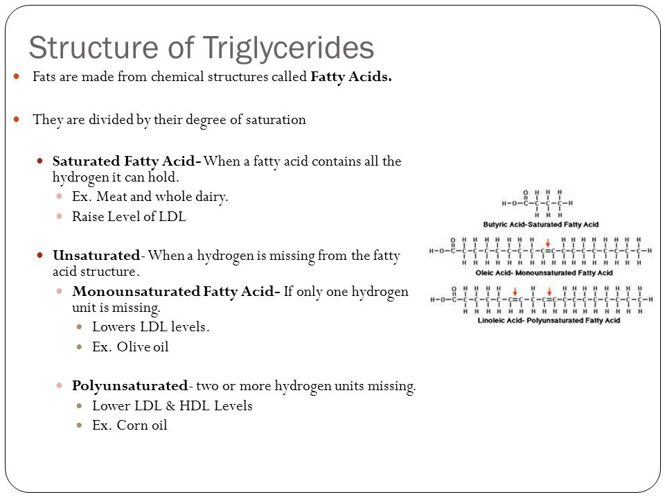 Structure of Triglycerides Fats are made from chemical structures called Fatty Acids.