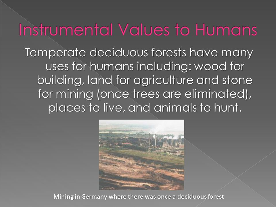Temperate deciduous forests have many uses for humans including: wood for building, land for agriculture and stone for mining (once trees are eliminated), places to live, and animals to hunt.