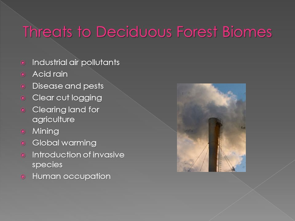  Industrial air pollutants  Acid rain  Disease and pests  Clear cut logging  Clearing land for agriculture  Mining  Global warming  Introduction of invasive species  Human occupation