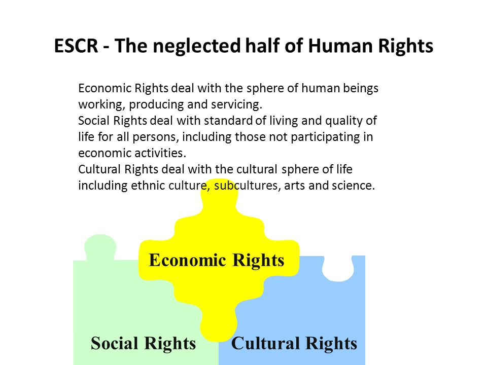 Economic Rights Cultural RightsSocial Rights ESCR - The neglected half of Human Rights Economic Rights deal with the sphere of human beings working, producing and servicing.