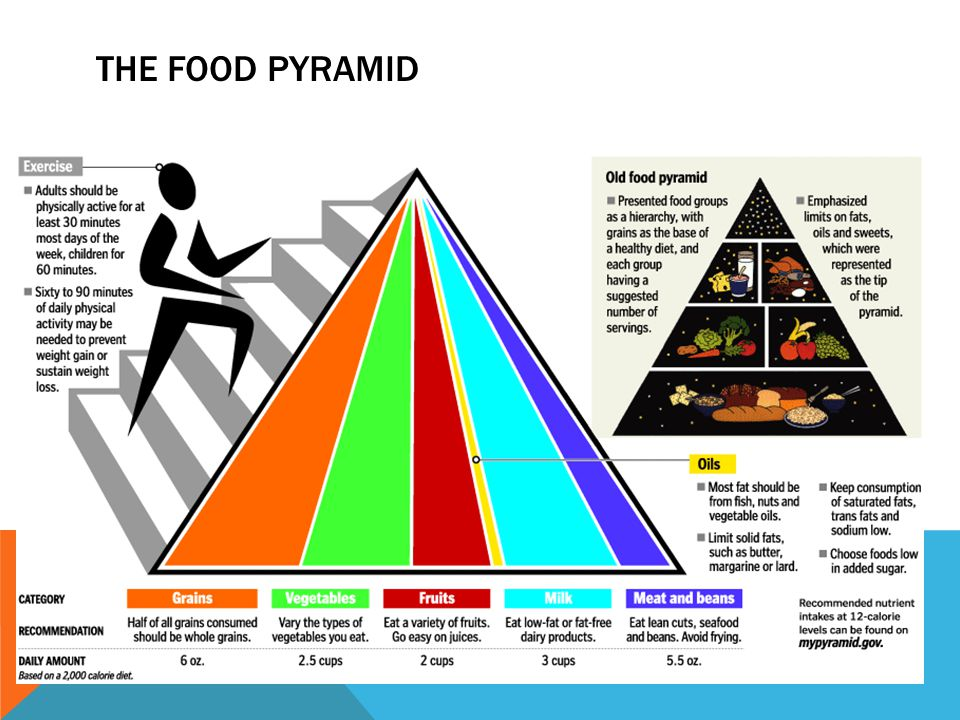6 THE FOOD PYRAMID