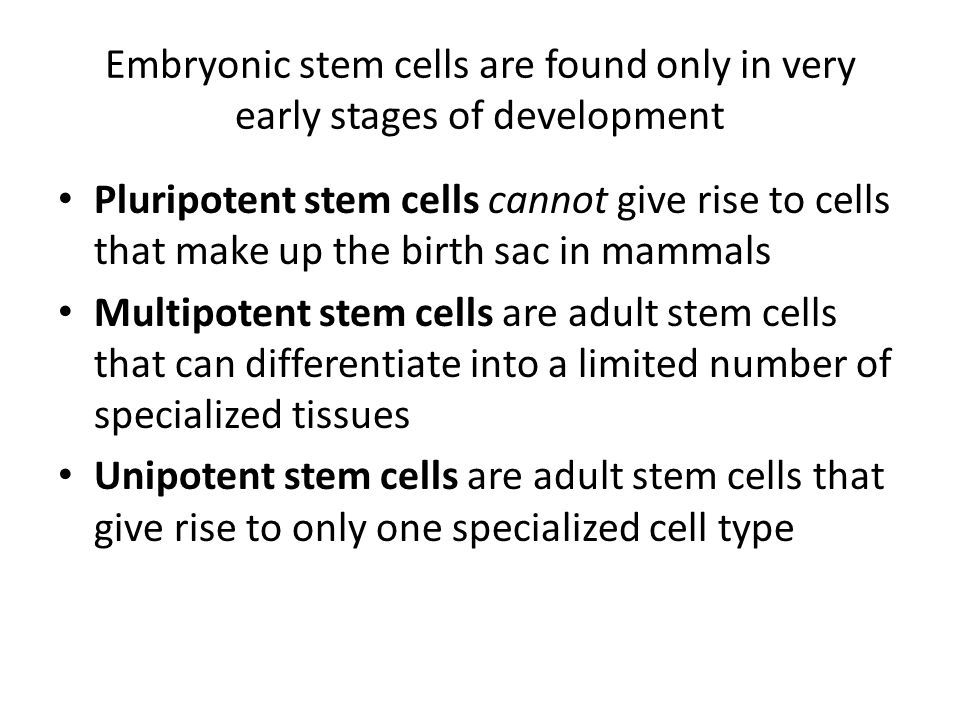 Embryonic stem cells are found only in very early stages of development Pluripotent stem cells cannot give rise to cells that make up the birth sac in mammals Multipotent stem cells are adult stem cells that can differentiate into a limited number of specialized tissues Unipotent stem cells are adult stem cells that give rise to only one specialized cell type